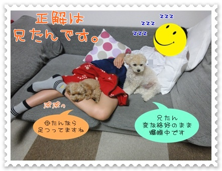 b3_20110927193435.jpg