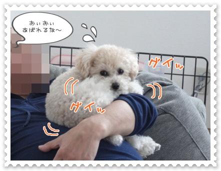 b3_20120103225855.jpg