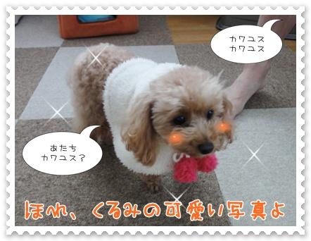 b3_20120109215231.jpg