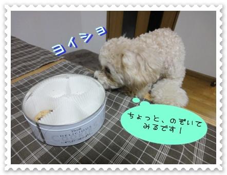 b4_20110110014943.jpg
