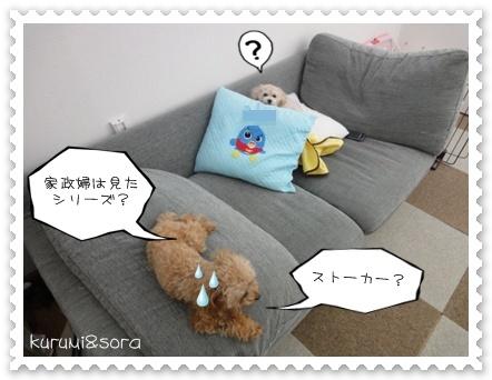 b4_20110121233508.jpg