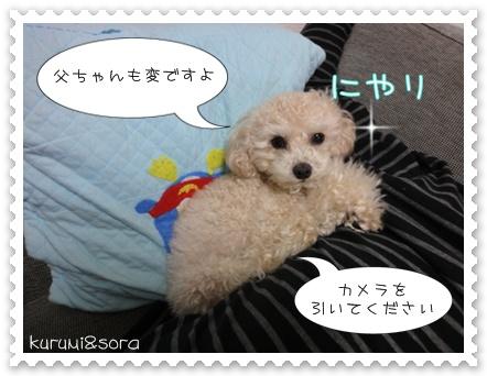 b4_20110129172725.jpg