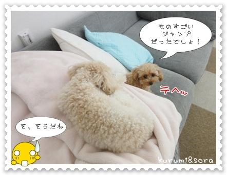 b4_20110511163912.jpg