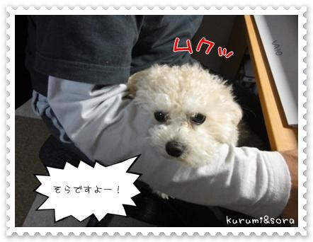 b4_20110517183637.jpg