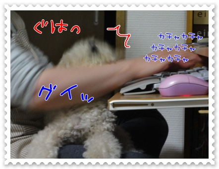 b4_20110702204433.jpg