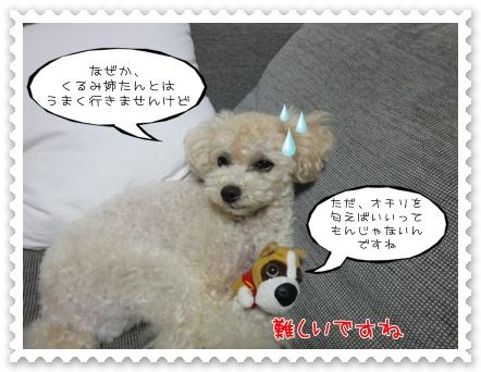 b4_20110903181040.jpg