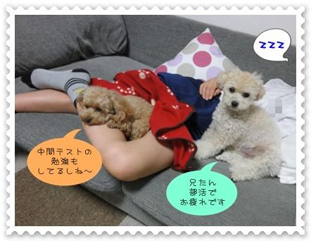 b4_20110927193435.jpg