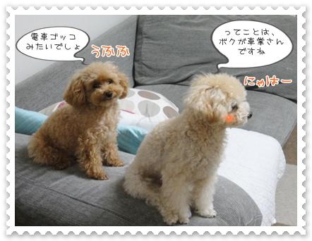 b4_20111130214602.jpg