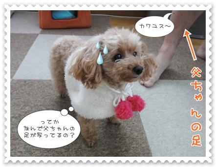 b4_20120109215231.jpg