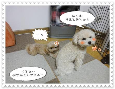 b4_20120129164624.jpg