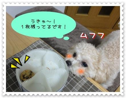b5_20110110014943.jpg