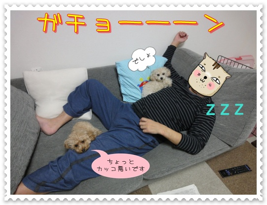 b5_20110129172725.jpg