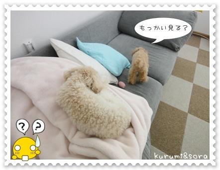 b5_20110511163907.jpg