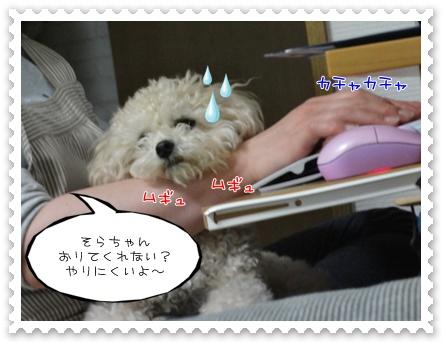 b5_20110702204433.jpg