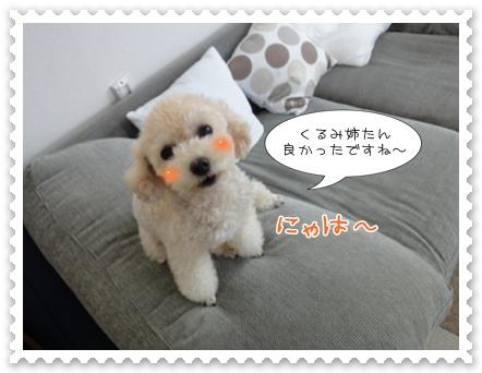 b5_20110919094446.jpg