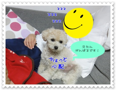 b5_20110927193434.jpg