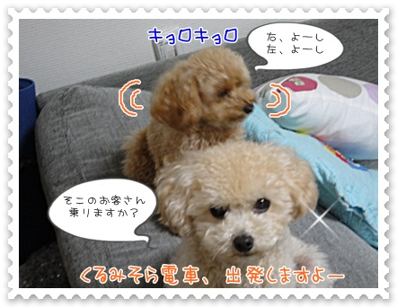 b5_20111130214602.jpg