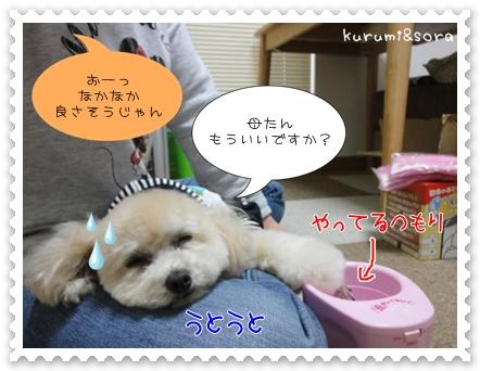 b6_20110606194516.jpg