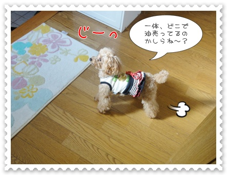 b6_20110618154852.jpg