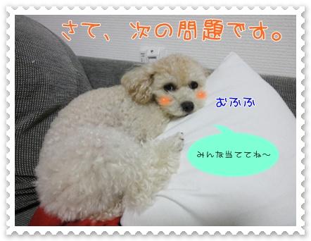 b6_20110927193434.jpg