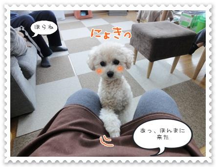b6_20120103225854.jpg