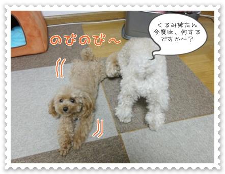 b6_20120129164624.jpg