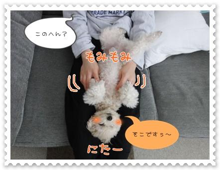 b6_20120204155257.jpg