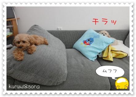 b7_20110121233558.jpg