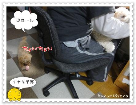 b7_20110517183809.jpg