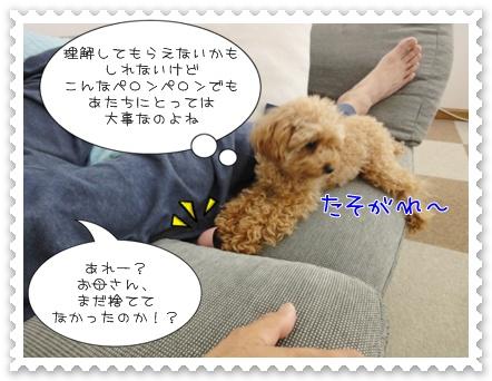 b7_20110531163024.jpg