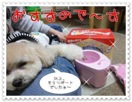 b7_20110606194550.jpg