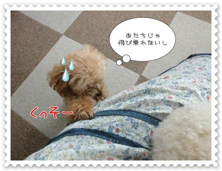 b7_20110723163030.jpg