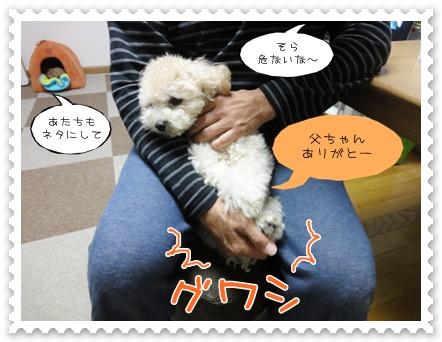 b7_20111107230010.jpg