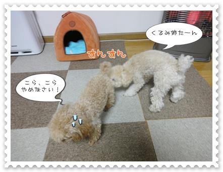 b7_20120129164937.jpg