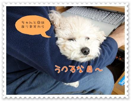 b7_20120208203815.jpg