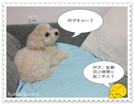 b8_20110310211047.jpg