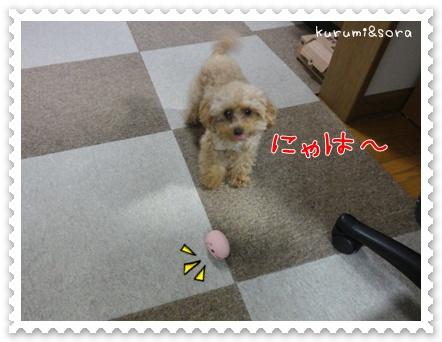 b8_20110517183807.jpg