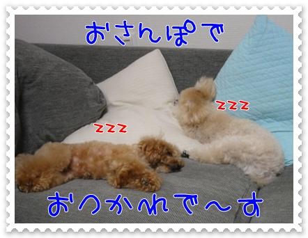 b8_20110606194549.jpg