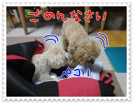 b8_20110806191108.jpg