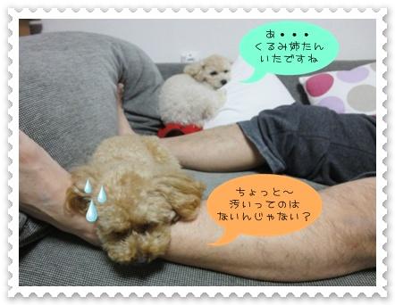 b8_20110927193509.jpg
