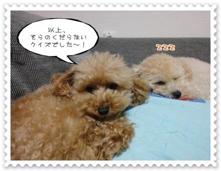 b8_20111107230010.jpg