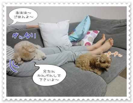 b8_20111116200230.jpg
