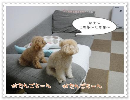 b8_20111130214650.jpg