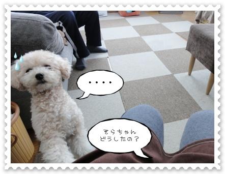 b8_20120103230048.jpg