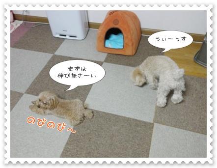 b8_20120129164937.jpg