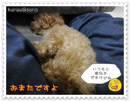 b9_20110129172811.jpg