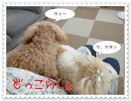 b9_20110723163030.jpg
