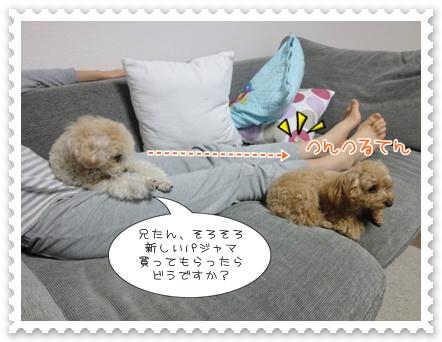 b9_20111116200230.jpg