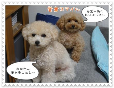 b9_20111130214649.jpg