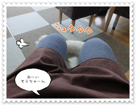 b9_20120103230048.jpg